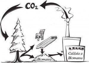 CO2-neutra